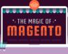 Fun Magento Facts for an Aspiring Retailer